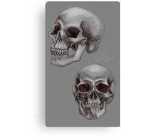 Skull things Canvas Print
