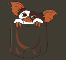 Gizmo in my Pocket by KokoBlacksquare