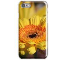 Gerbera iPhone Case/Skin