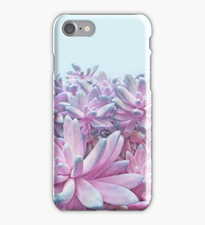 Sweet Succulents iPhone Case/Skin