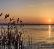Serenity, Monte del Lago, Lago Trasimeno, Umbria, Italy by Andrew Jones