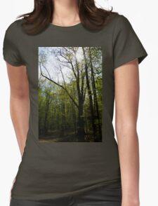 Light to Dark Womens Fitted T-Shirt