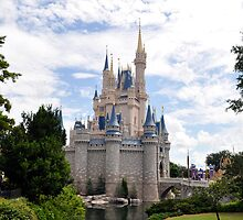 Cinderella's Castle  by hippymeow