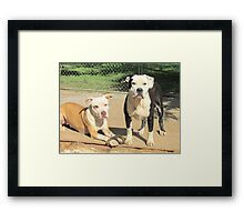 What? We Were Playing... Framed Print