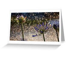 Bokeh Magic Greeting Card