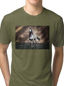 Beautiful Horse  Tri-blend T-Shirt