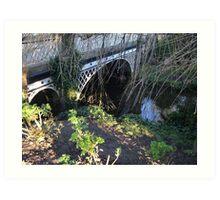 Bridge. Pavilion Gardens. Buxton. Art Print