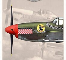 North American P-51 by A. Hermann