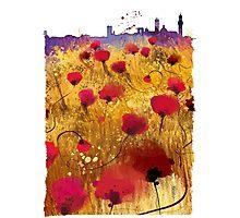 Siena skyline Photographic Print