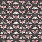 Moth pattern on dark grey by drawcard