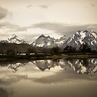 Lago Verde, Patagonia, Chile, Torres del Paine, Matt Emrich Photo by Matt Emrich