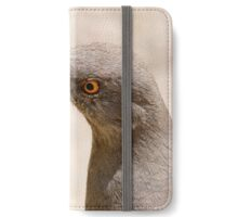 curved bill thrasher iPhone Wallet/Case/Skin