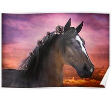 Beautiful Horse 5 Poster