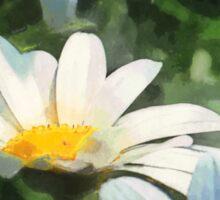 Gardens - Three White Daisies Sticker