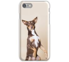 Kelpie phone case, begging dog iPhone Case/Skin