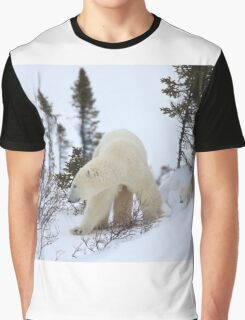 On the way to the sea ice Graphic T-Shirt