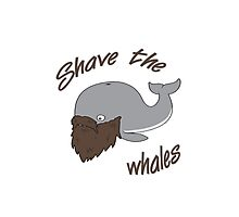 Funny Shave the Whales Photographic Print