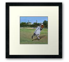 Baseball Catcher Kitten Framed Print
