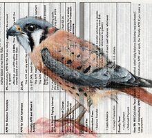 APR Falcon by paulapaints