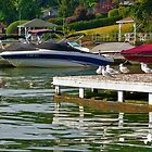Boats and Birds by TJ Baccari Photography