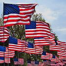 Proud To Be  An American by lorilee