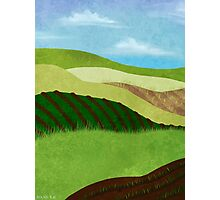 Fields And Farms Under A Summer Sky Photographic Print
