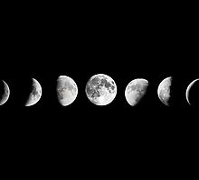 Cool Moon Phases  by Kitty Bitty