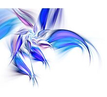 Blue Flower - Abstract Fractal Artwork Photographic Print