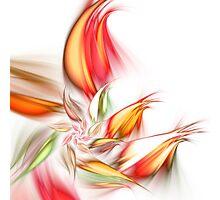 Orange Flower - Abstract Fractal Artwork Photographic Print