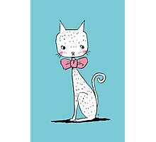 Cat with a ribbon Photographic Print
