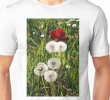 Dandelions with Red in Radolfzell - Lake Constance Unisex T-Shirt