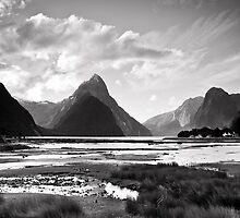 Milford Sound, Fiordland National Park by Shaun Jeffers Photography