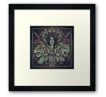 Kabuto Framed Print
