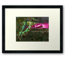 Mindo Hummer Art Framed Print