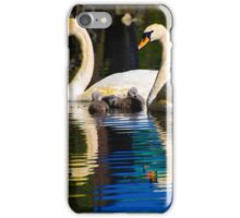 Mother, Father, and Baby Swans (Cygnets) iPhone Case/Skin