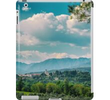 summer day in the countryside iPad Case/Skin