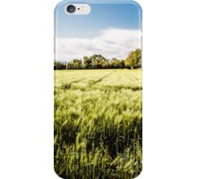 italian fields in the countryside iPhone Case/Skin
