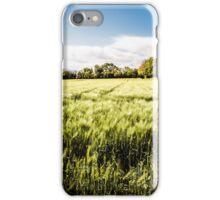 italian fields in the countryside iPhone Case/Skin