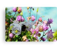 Honey for the Bee Canvas Print