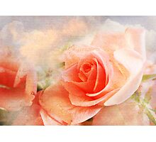 Salmon Pink Rose Collage Art  Photographic Print