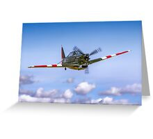 EFW D-3801 J-143 HB-RCF in flight Greeting Card