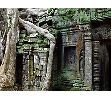 Angkor Wat Tree Temple Photographic Print
