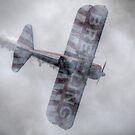 Breitling Stearman Wingwalkers Top Side by Nigel Bangert