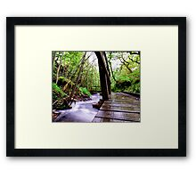 English River Bridge Framed Print