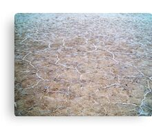 Salt Patterns Canvas Print