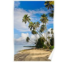 Palm Trees in Rarotonga, Cook Islands, South Pacific Poster