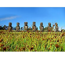 Easter Island Statues Through Fields Photographic Print