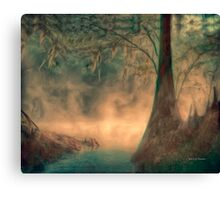 Steamy Mossy Morning Canvas Print