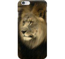Kofi iPhone Case/Skin