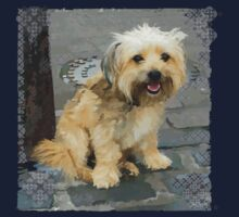 Louie the Shorkie-Tzu : Shih Tzu Yorkshire Terrier (Yorkie) Mix One Piece - Short Sleeve